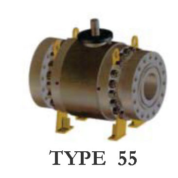 Type 55 Trunnion Mounted Ball Valve