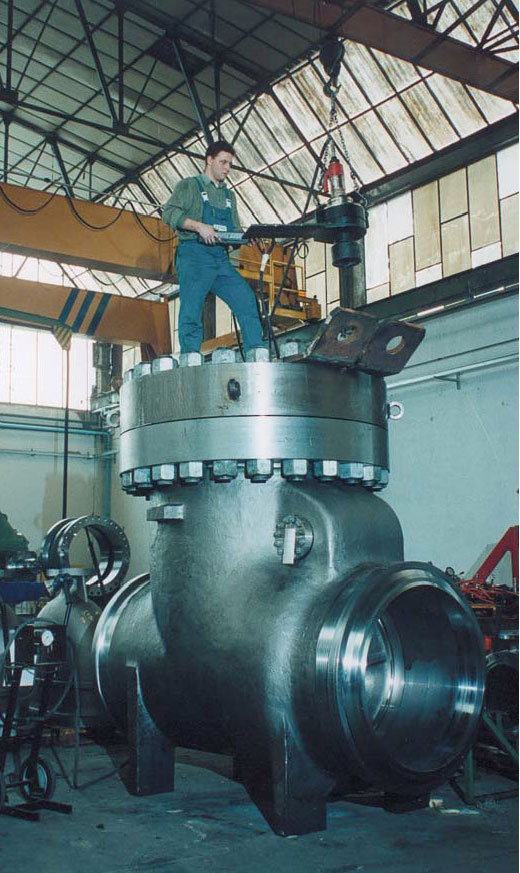 Inspecting a Check Valve